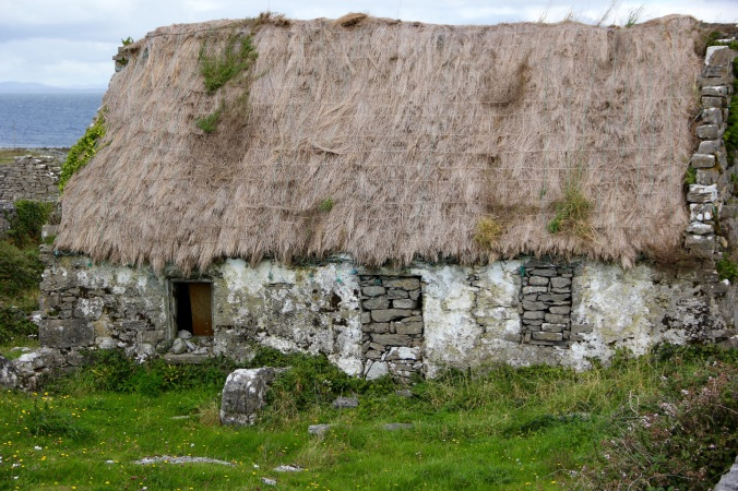 Irish Thatched Roof Home